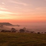 Great Prawls farm holiday cottages